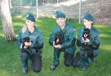 Guardia Civil guias caninos