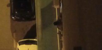 detenidos_alicante_arrojar_piso